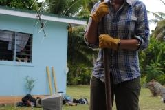 Cook Islands 1207