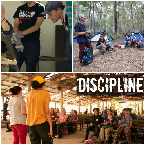 discipline collage